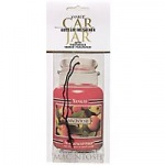 Yankee Candle Car Jar Classic Macintosh