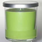 Yankee Candle Housewarmer Lime Citrus Passion 198 gramm LE