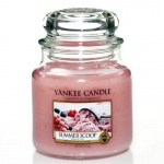Yankee Candle Housewarmer 411 Gramm Summer Scoop
