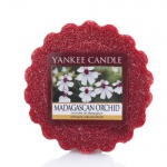 Yankee Candle Madagascan Orchid Tarts