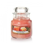 Yankee Candle Summer Peach Housewarmer 104 Gramm