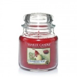 Yankee Candle Housewarmer 411 Gramm Cranberry Pear