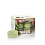 Yankee Candle Lemongrass Ginger Tea Lights Teelichter