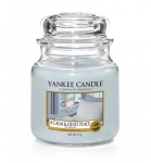 Yankee Candle a calm & Quiet Place Housewarmer 411 Gramm