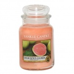 Yankee Candle Delicious Guava Houswarmer 623 Gramm