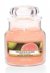 Yankee Candle Delicious Guava Houswarmer 104 Gramm