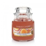 Yankee Candle Honey Clementine Housewarmer 104 Gramm