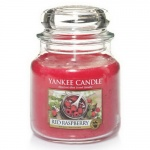 Yankee Candle Housewarmer 411 Gramm Red Raspberry limitiert